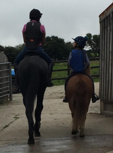Private/Semi-Private/Group Sessions @ Barguse Riding Centre