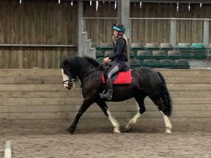 Take Back The Rein Group Sessions @ Barguse Riding Centre