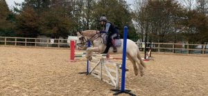Private/ Semi-Private/ Group Lessons @ Barguse Riding Centre
