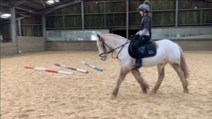 Private Lessons @ Barguse Riding Centre
