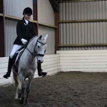 Dressage Academy on Friday